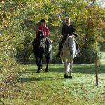 Equitation dans le morvan