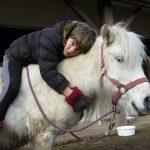 équithérapie, ou thérapie avec le cheval