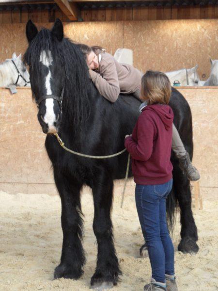 Thérapie avec le cheval (6)
