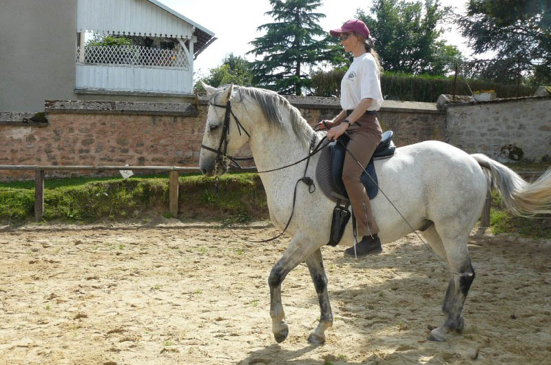 equitationcentree800x530