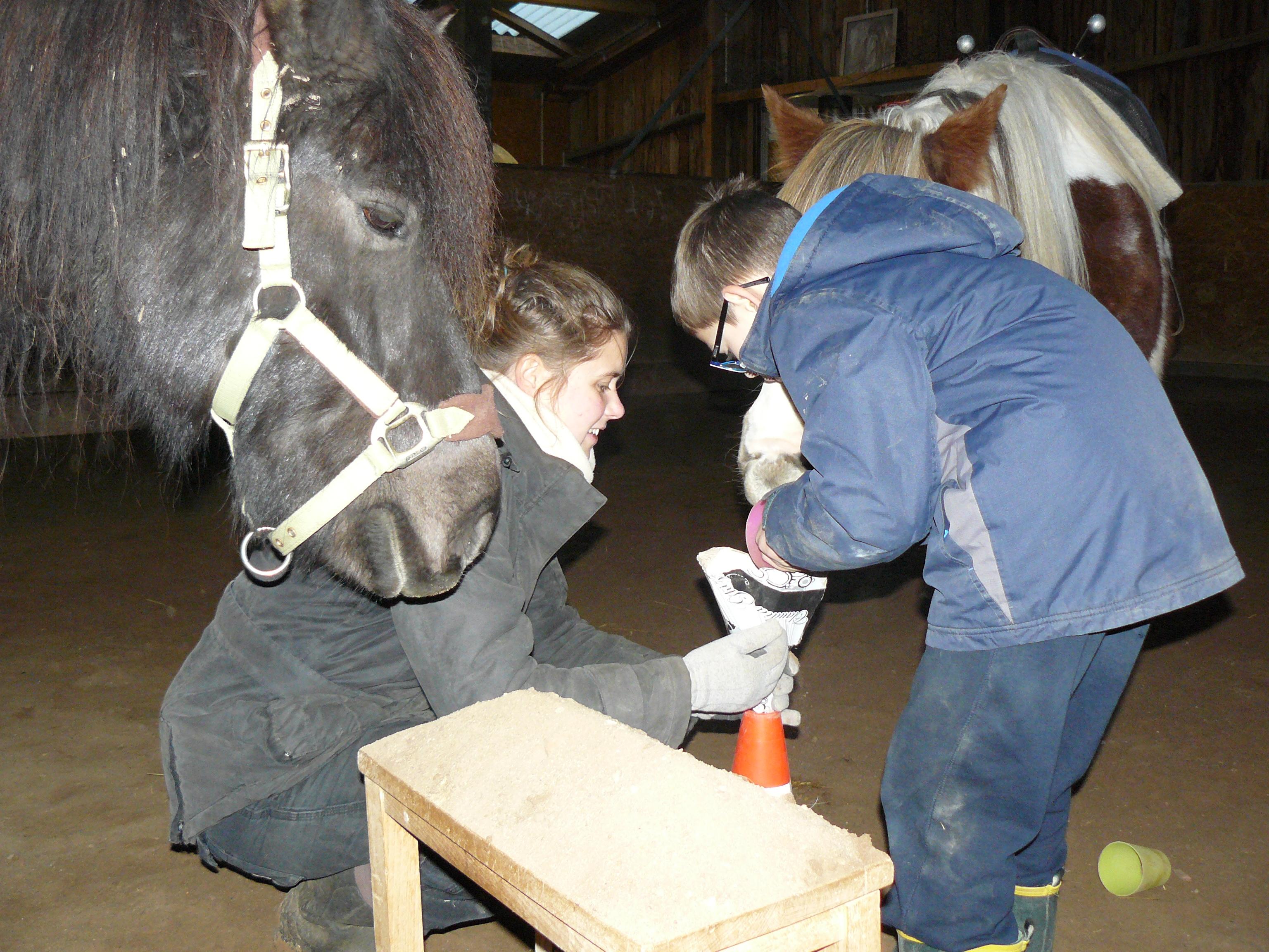 Thérapie avec le cheval (3)